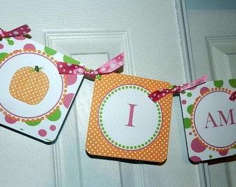 Pumpkin Birthday- Fall Birthday Banner-  High Chair Banner -Fall Birthday Decorations- I Am One- Fall Birthday