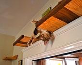 20% off Handcrafted Red Oak & Black Walnut Hardwood Cat Shelves, Set of 5