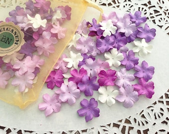 100 Mulberry Flowers Lavender