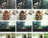 2 Actions Photoshop - Blue Picchu & Green Tea