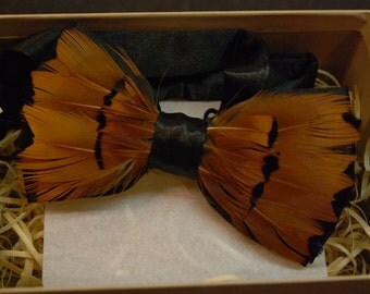 Feather bow tie: The Roly Poly Pheasant
