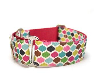 "1.5"" dog collar Taj Mahal buckle or martingale collar"