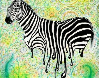 Zebra Running 8X10 Archival Giclee Print