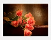 Flower Photography, coral, brown, roses, rain, Roses in the Rain, fine art photography print 8x10