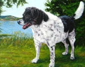 """CanineCharmer Callie, custom Pet Portrait Oil Painting by puci, 12x16"""""""