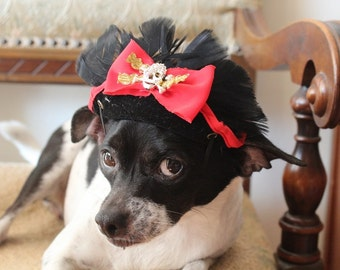 Very cute pirate hat for dog or cat