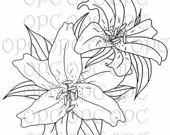 Digital Stamp Stargazer Lilies