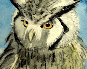 """Owl Art- """"Dignity""""  - ACEO Watercolor Painting"""