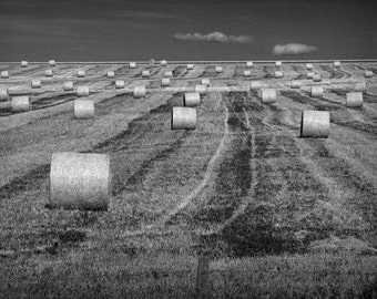Hay Straw Bales during Harvest in Southern Alberta Canada No.1925 A Black and White Fine Art Landscape Photograph