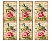 CROWNED BIRD Digital Collage Sheet Instant Download for Gift Tags Scrapbook Album Art Paper Crafts Supplies by GalleryCat CS175