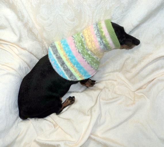 Small dog snood felted Fair Isle wool pastel pets clothing handmade soft and warm