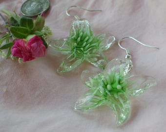 Green Splash Starfish Earrings