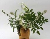 Ceramic vase,  Pencil Holder, Honey Color, Home Decor