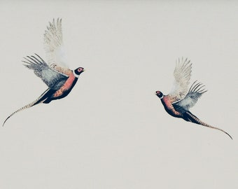 Flying Pheasants, Bird Art Print, Bird Illustration, limited edition print of original drawing