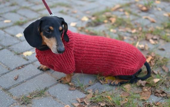 Knitting Pattern For Dachshund Dog : Dog jumper Dachshund clothes Dog Sweater Dachshund sweater