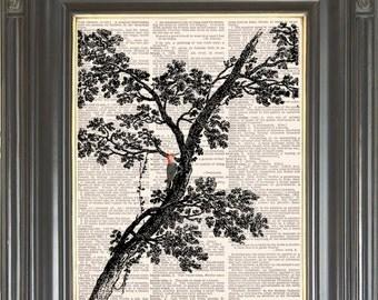 Tree wall decor digital art print on dictionary or music page Red woodpecker bird Dictionary art print Sheet music print Item No 603