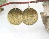 Fern Earrings, Brass Botanical Jewelry
