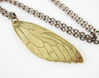 Cicada Wing Necklace, Entomology  Necklace