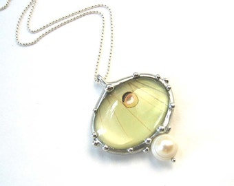 Oval Luna Moth Necklace With Fresh Water Pearl