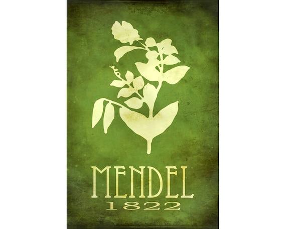 24x36  Gregor Mendel Science Art Print - Genetics Rock Star Scientist Poster