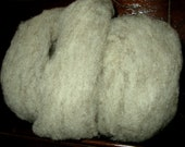 ROVING Babydoll Southdown & Cormo, 4oz With Cream