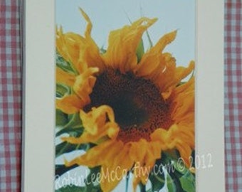 059 5x7 Matted Sunflower Signed Photography Print (water droplet)