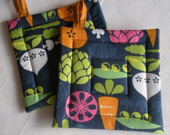 Modern Veggie Pot Holders, set of 2, in Blues, Greens, Orange, White and Pink