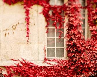 Paris Photography, Fall Photography, Fall Decor, Autumn in Paris Print, Paris Window, Red Art, Wall Decor - Climbing the Walls