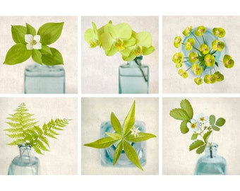 Botanical Print Set, Green Art, Photography Set, Botanical Wall Art, Green, Teal, Aqua, Cottage Chic, Wall Art, Wall Decor, Set of 6 Prints