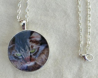 Maine Coon Tabby Cat Art Painting in Silver Jewelry Necklace Pendant