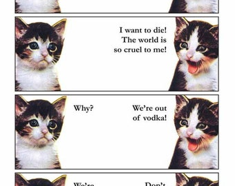 Vodka Kittens 11 x 14 Art Cat Print