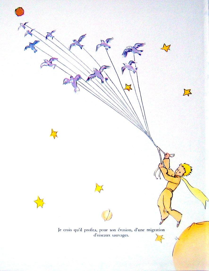 Resultado de imagen para le petit prince illustrations