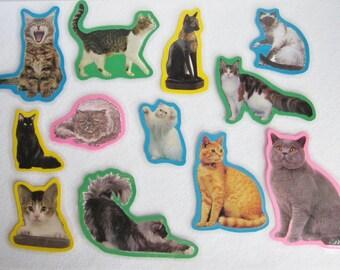 Cats Felt Board Set, Cats Flannel Board Story Set, Animal Felt Board Set