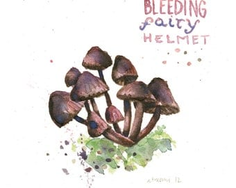 Bleeding Fairy Helmet Mushroom Print (5x6 in)
