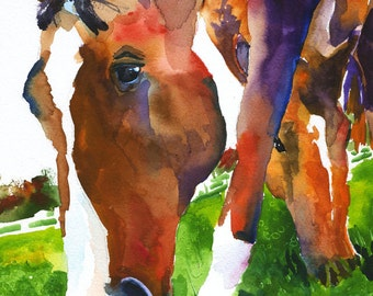 Grazing Horses 11x14 Signed Art Print