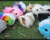 Guinea Pig - adult size cartoon cavy PATTERN - make Peruvian or Sheltie or Abyssinian or Sheba