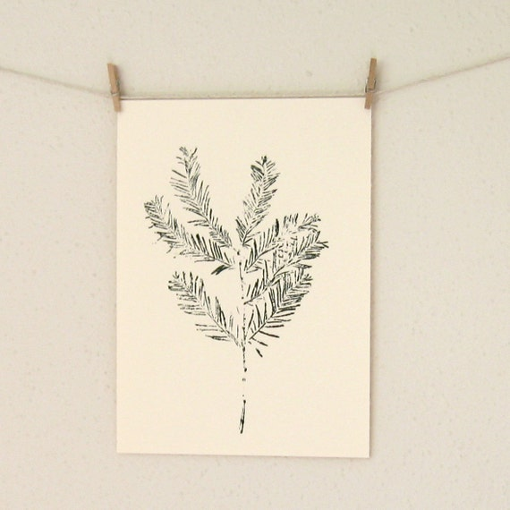 Botanical Art Print, Hand Pulled Print From an Evergreen Branch, A Nature Print in Pine Green
