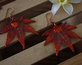 Pendant Leaf Earrings, Real Japanese Maple Leaf Pendant Size Copper Earrings, LEP27