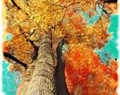 Under blue skies,11x17, Original, landscape, Fine Art photograph, mixed media, painting, Fall decor, tree, Nature decor, orange, blue, art