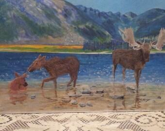 Moose Family near Mt. Katadin