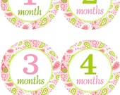 Baby Monthly Stickers for Baby Girl/Baby Girl Monthly Stickers/Baby Shower Gift/Paisley Pink and Green Monthly Stickers for your Little Ones