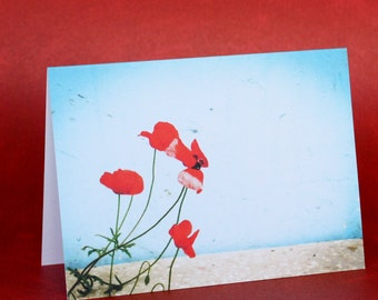 Poppies in the Breeze Notecard