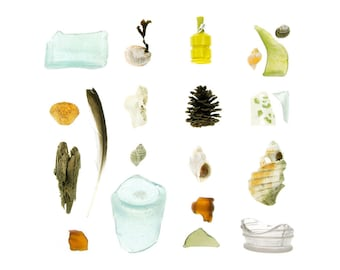Beachcombing series (No.60) - 8 x 8 photograph - sea glass, driftwood, shells