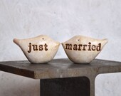 Wedding cake topper...Love birds... just married