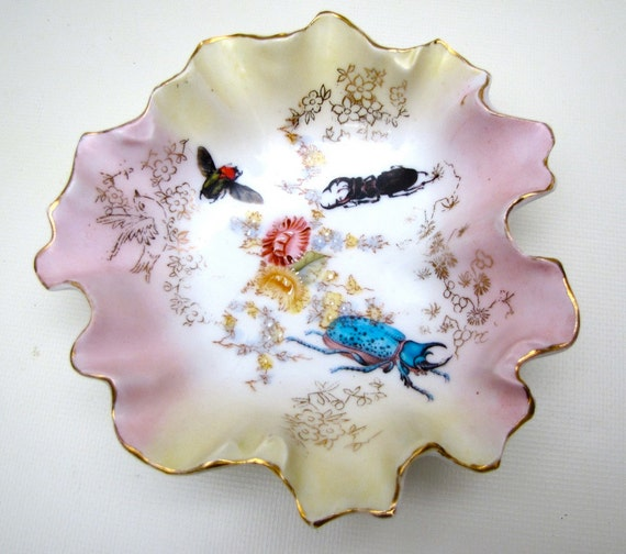 Altered Vintage Plate Porcelain Insects Beetles Creepy Curio Cabinet display ooak Halloween Steampunk Gothic