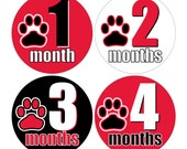 12 Monthly Baby Milestone Waterproof Glossy Stickers - UGA Georgia Dawgs - Design M026-02