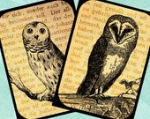 OWLS ON TEXT Digital Collage Sheet 2.5x3.5in Printable Download - no. 0091