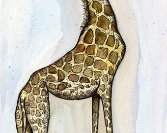 Little Long Legs - Giraffe Art Print