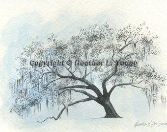 Ford Plantation Gateway Live Oak Tree Drawing Print in Icy Blue Watercolor Wash Painting