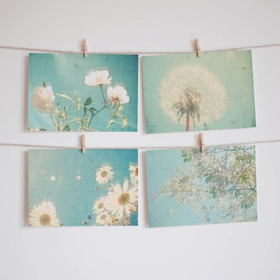 Postcard Set, Flower Photography, Nature Photo, Pastel Blue and White, Daisy Art, White Rose, Affordable Art - Garden